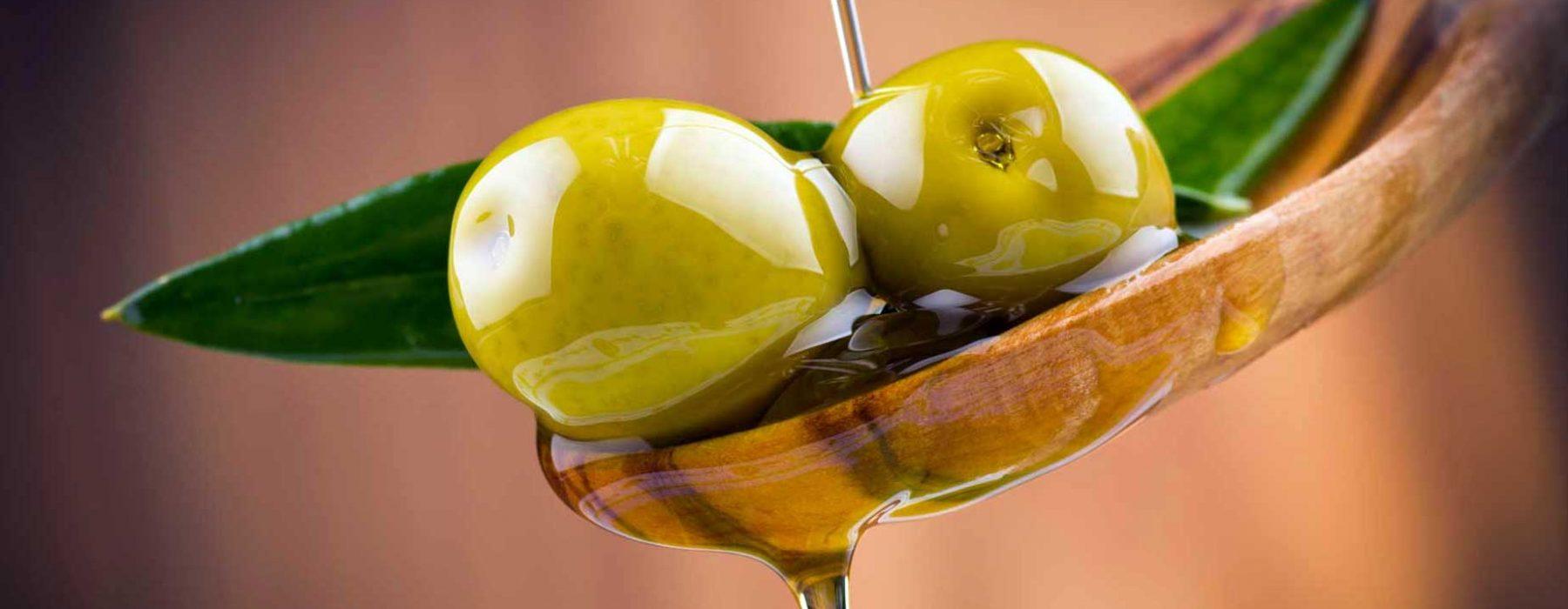 Lazio. The season of oil presses, olives and olive oil